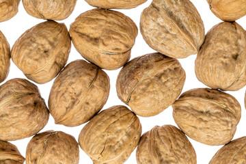 English walnuts on white background