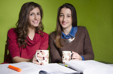 Beautiful female students studying together at home