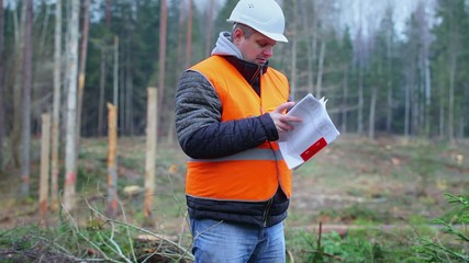 Forest engineer checking documents in the forest
