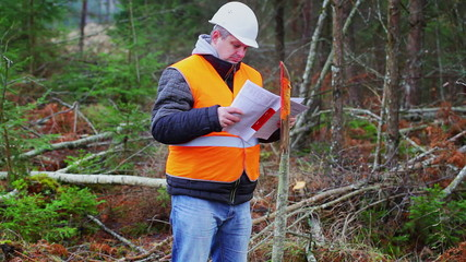Forest engineer flipping documents in the forest