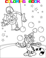 Cat and monkey in a circus