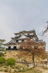 春の彦根城の天守