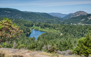 looking out across forested valley near Victoria, BC, Canada