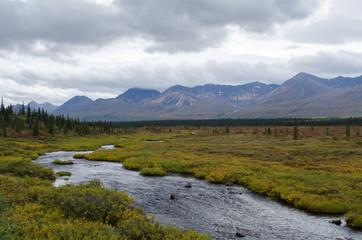 Alaskan Tundra Creek