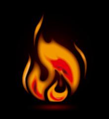 Firer design over black background vector illustration