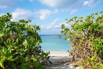 沖縄のビーチ・楚辺ビーチ