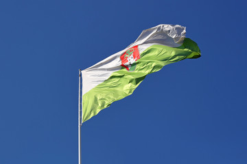 Ljubljana flag