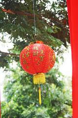 Red chinese lantern on green bokeh background