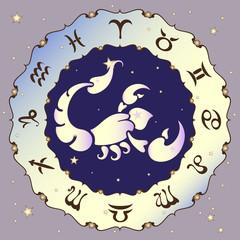 Scorpio zodiac sign, vector illustration