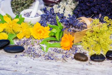 Heilkräuter, Globuli, Bachblüten, Heilsteine