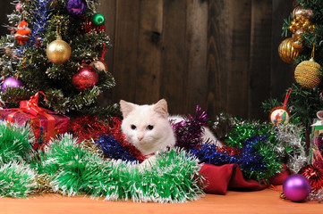 White cat playing  Christmas tree