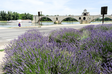 St-Benezet bridge at Avignon on France