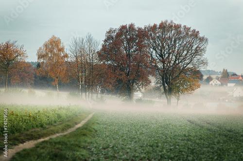 canvas print picture Herbsttag erwacht