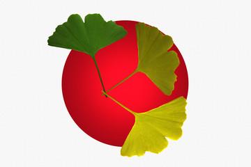 Japon - Ginkgo Biloba - Emblème - Hiroshima