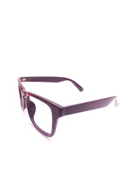 視力補助・メガネ