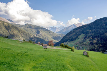 Alpine meadow in Tirol