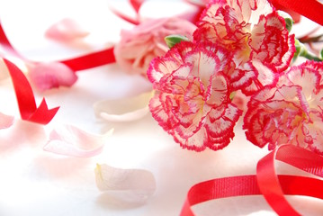 carnation flowers with ribbon