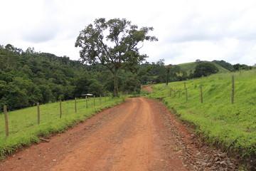 Estrada no Pico do Gavião