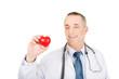 Portrait of male doctor holding heart model