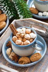 spicy cocoa with marshmallows, cinnamon and cookies © cook_inspire