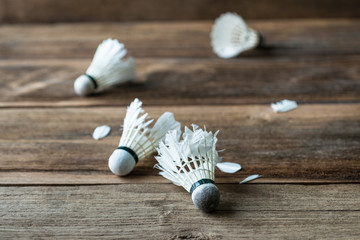Shuttlecock with parts of its feathers scattered