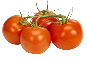 Four Tomatoes On A vine