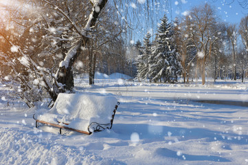 Bench in the park covered with snow