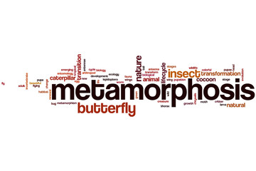 Metamorphosis word cloud