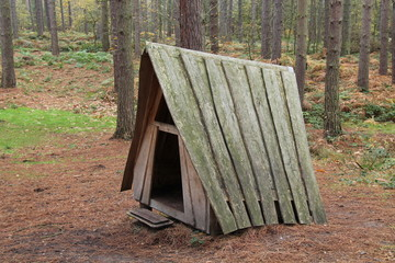 A Wooden Play Shelter in a Woodland Setting.