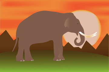 Vector illustration of elephant at sunset in tropical landscape.