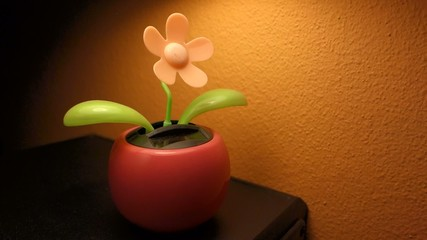 Solar dancing flower toy, powered from sunlight