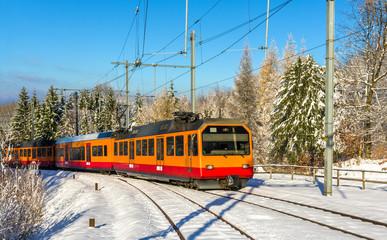 Zurich S-Bahn on the Uetliberg mountain - Switzerland