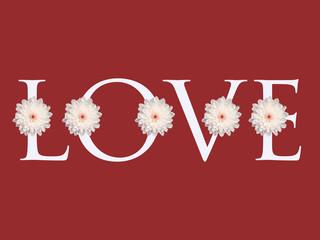 white daisy flower love letter design valentines day background