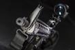 canvas print picture - AR-15 Gun