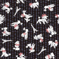 イヌのパターン