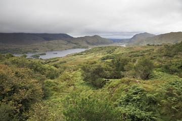 Ladies View in Killarney National Park.