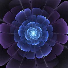 blue and black transparent 3d fractal abstract flower