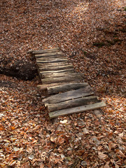 small wooden bridge on a background of fallen leaves