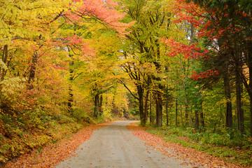 vermont road in autumn