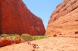 Kata Tjuta in Australian outback - 74573501