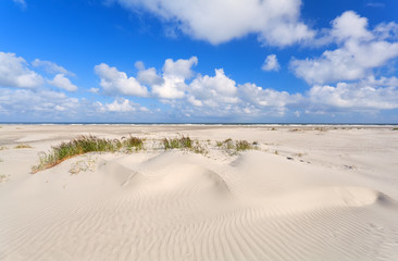 sand dunes and blue sky at coast