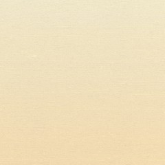 texture of the canvas beige. Vector