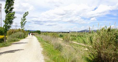 Camino en el Delta del Llobregat, Barcelona