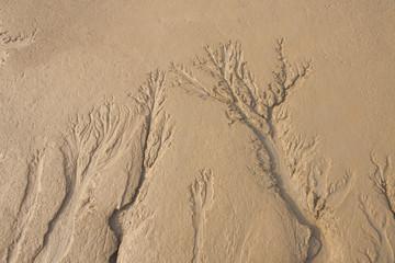 나무가지 2