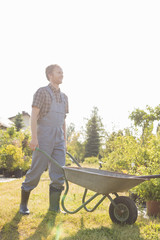 Full-length of man pushing wheelbarrow at garden