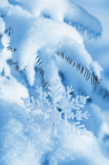 Winter background with decorative snowflake on the tree