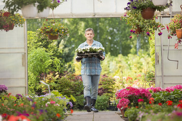 Portrait of gardener carrying crate with flower pots while entering greenhouse
