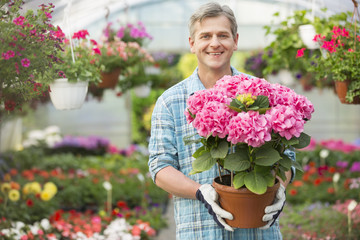 Portrait of happy gardener holding flower pot in greenhouse