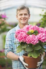 Portrait of happy man holding flower pot in greenhouse