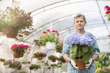 Portrait of confident gardener holding flower pot in greenhouse